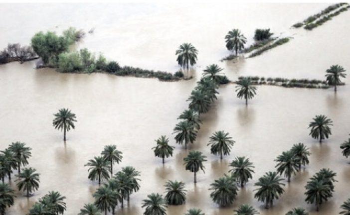 آخرین وضعیت پرداخت غرامت سیل به بخش کشاورزی خوزستان