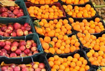 خوردن پرتقال در زمستان فراموش نشود
